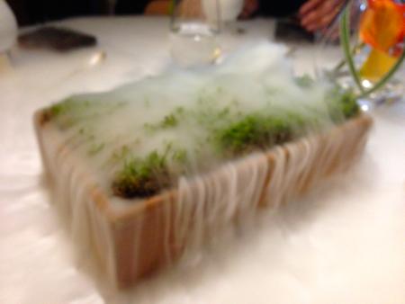 Moss Fog